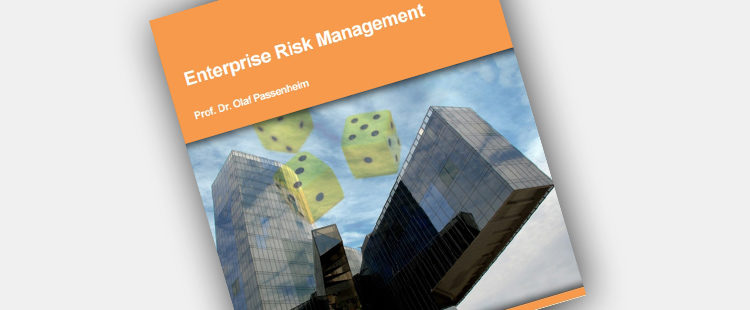 Enterprise Risk Management eBook